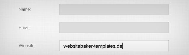 Websitebaker Formmodul